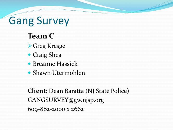 Gang Survey