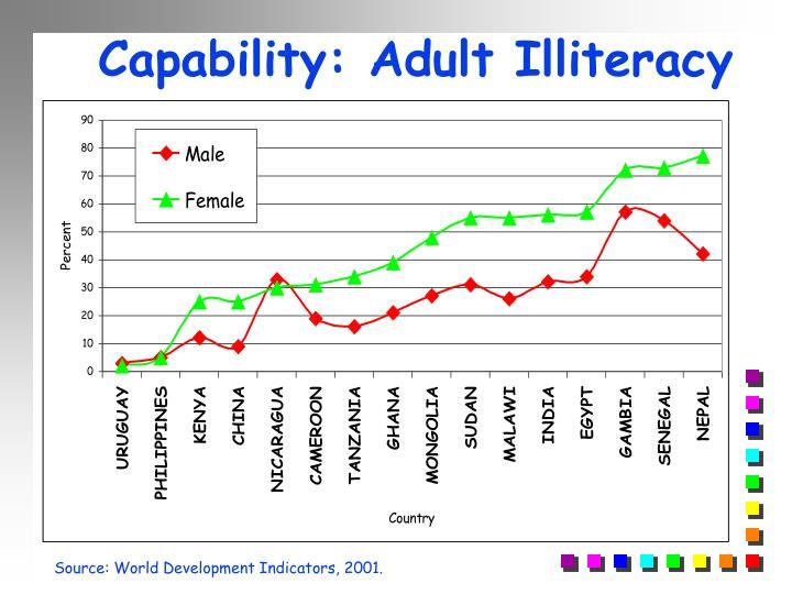 Capability: Adult Illiteracy
