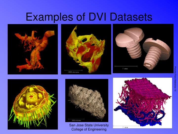 Examples of DVI Datasets