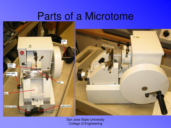 Parts of a microtome