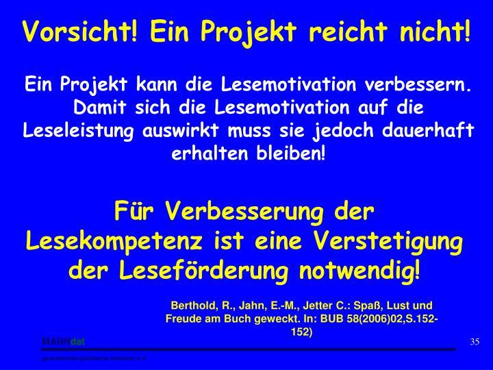 Vorsicht! Ein Projekt reicht nicht!
