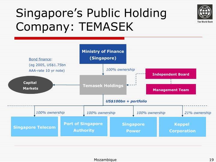 Singapore's Public Holding Company: TEMASEK