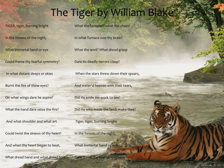 The Tiger by William Blake