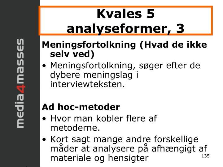 Kvales 5 analyseformer, 3