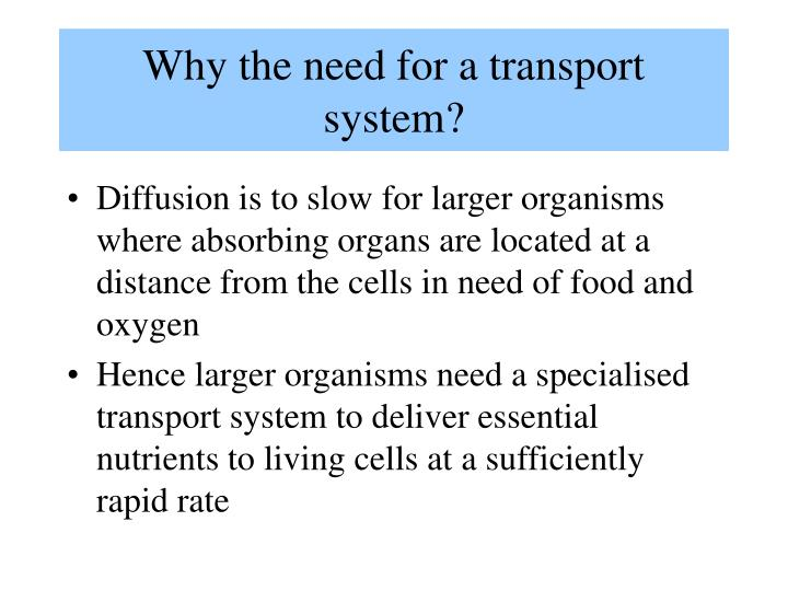 Why the need for a transport system?
