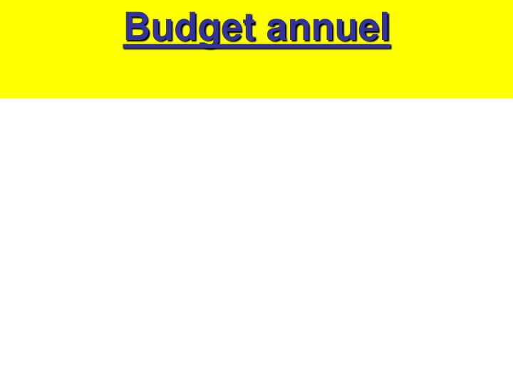Budget annuel