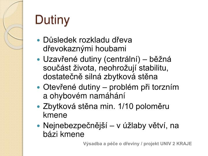 Dutiny
