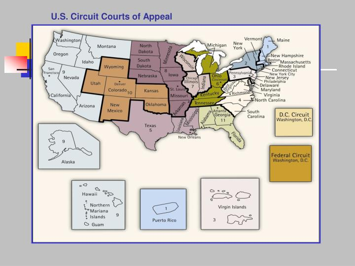 U.S. Circuit Courts of Appeal