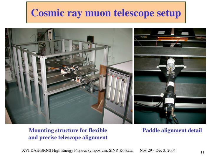 Cosmic ray muon telescope setup