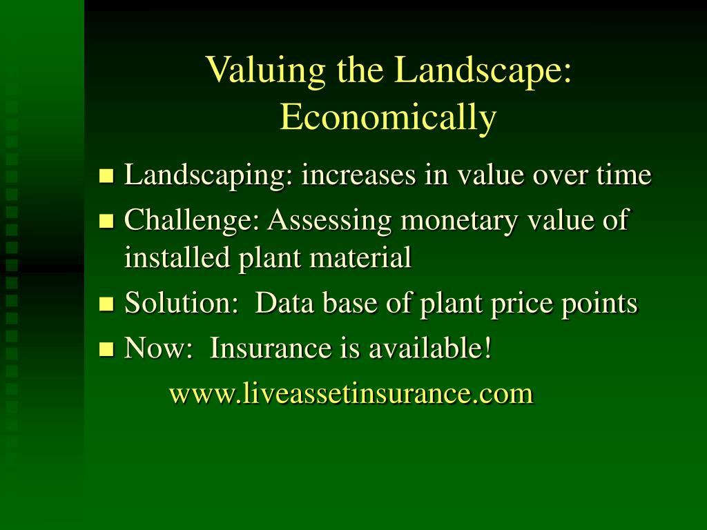 Valuing the Landscape:  Economically