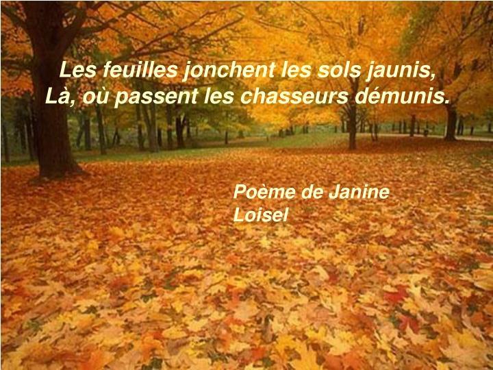Les feuilles jonchent les sols jaunis,