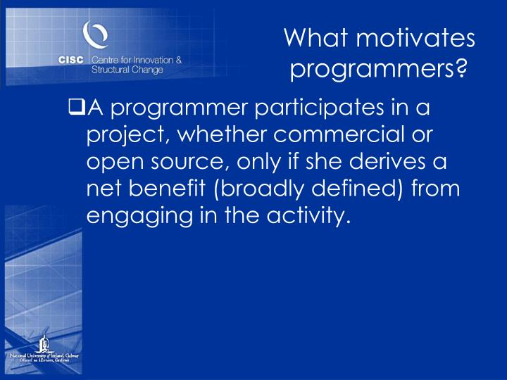 What motivates programmers?