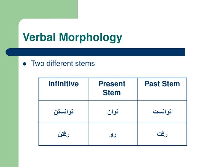 Verbal Morphology