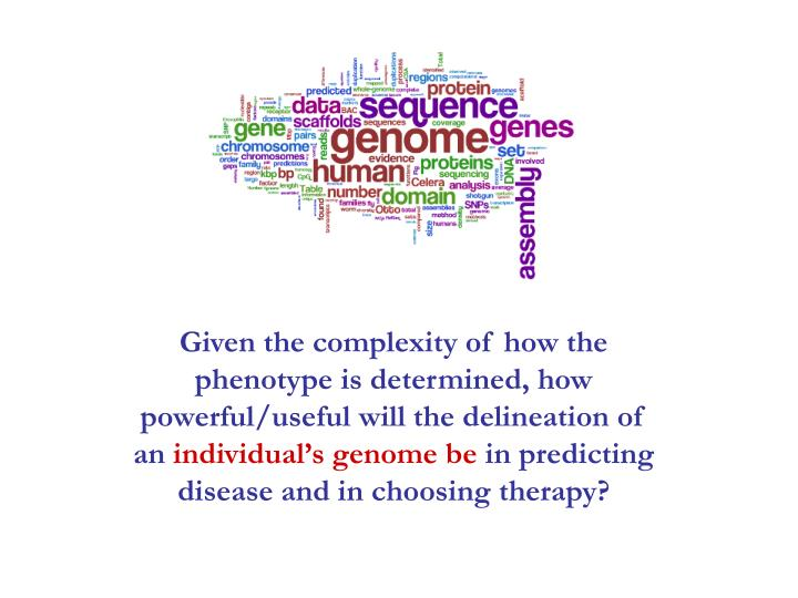 Given the complexity of how the phenotype is determined, how powerful/useful will the delineation of an