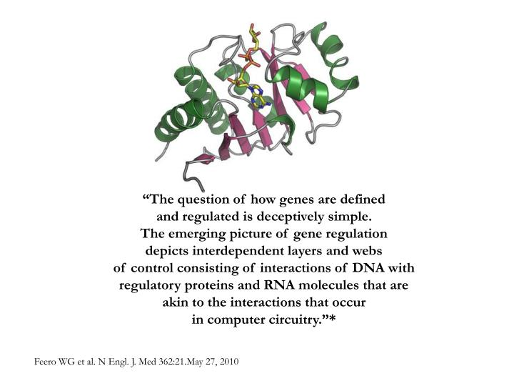 """The question of how genes are defined"