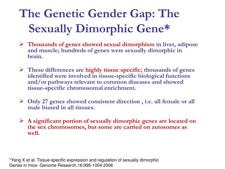 The Genetic Gender Gap: The Sexually Dimorphic Gene*