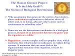 the human genome project is it the holy grail the notion of biological determinism