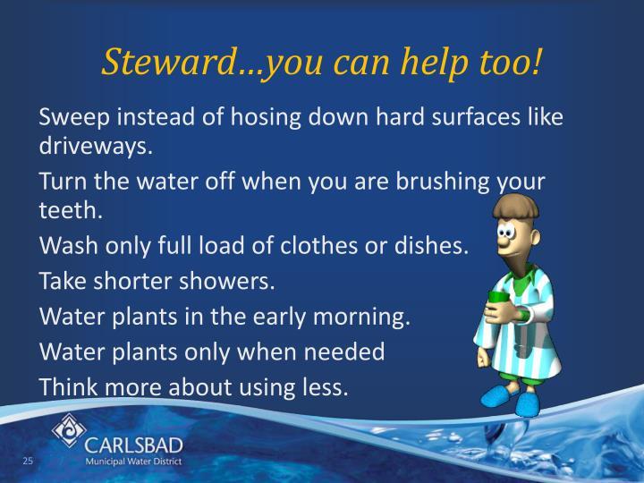 Steward…you can