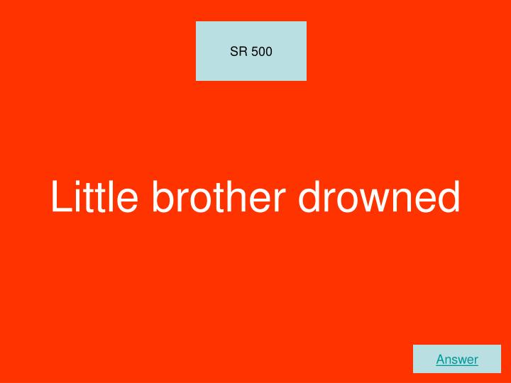 Little brother drowned