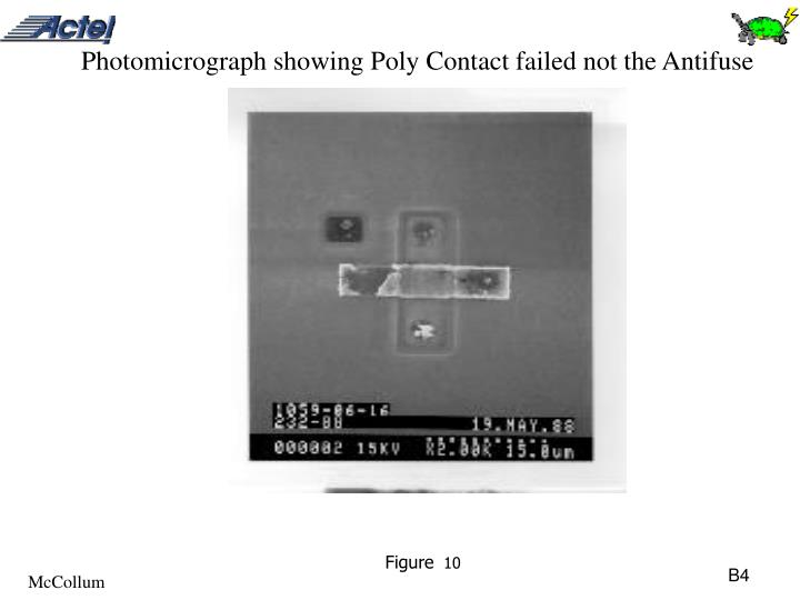 Photomicrograph showing Poly Contact failed not the Antifuse