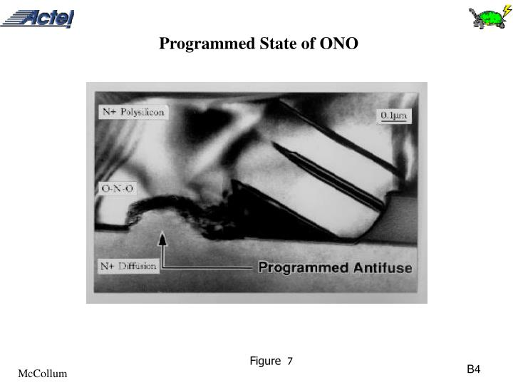 Programmed State of ONO