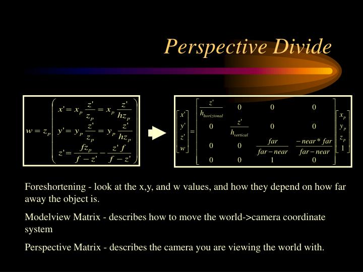 Perspective Divide