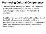 promoting cultural competency