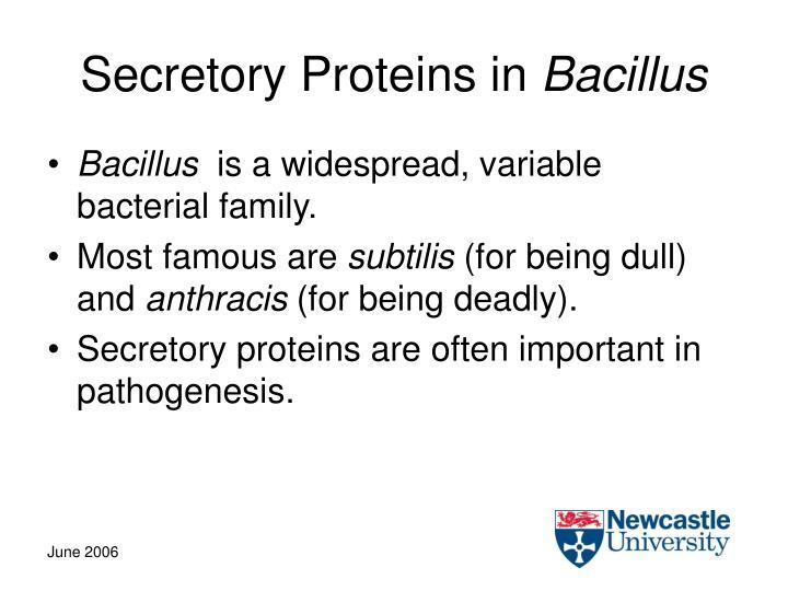 Secretory Proteins in
