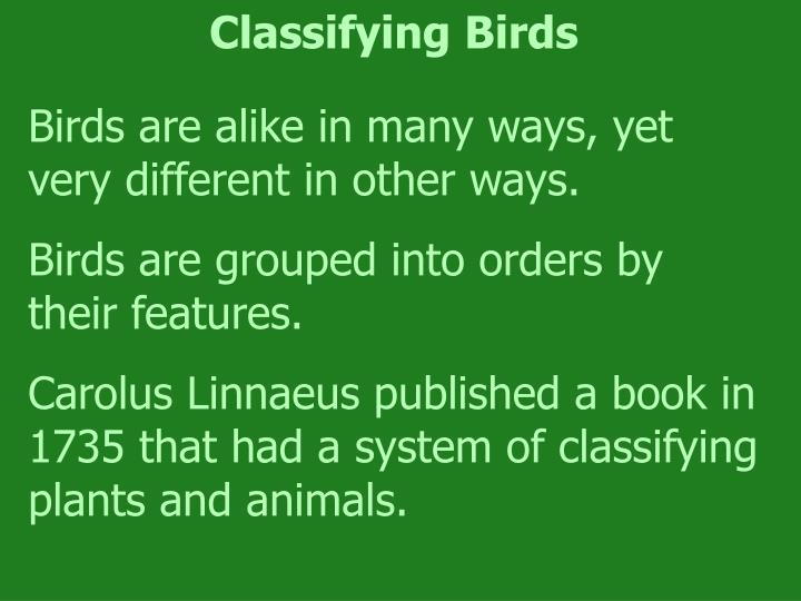 Classifying Birds