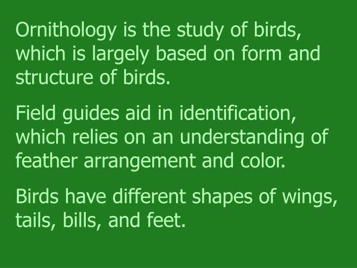 Ornithology is the study of birds, which is largely based on form and structure of birds.