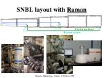 snbl layout with raman