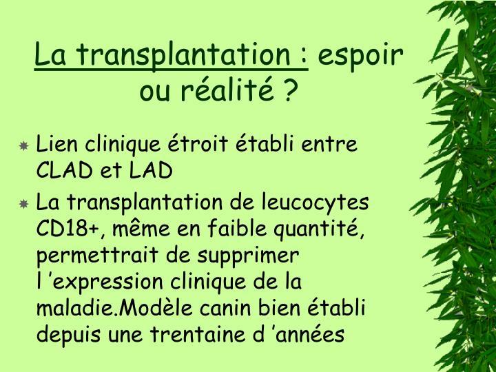 La transplantation :