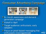 consumer advertising campaign