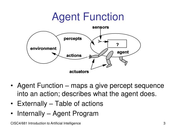 Agent Function