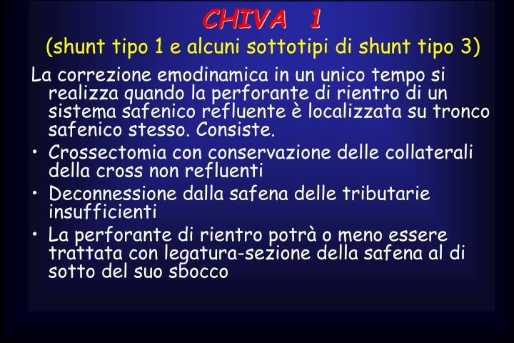 CHIVA  1
