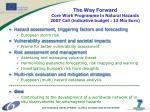 the way forward core work programme in natural hazards 2007 call indicative budget 13 mio euro
