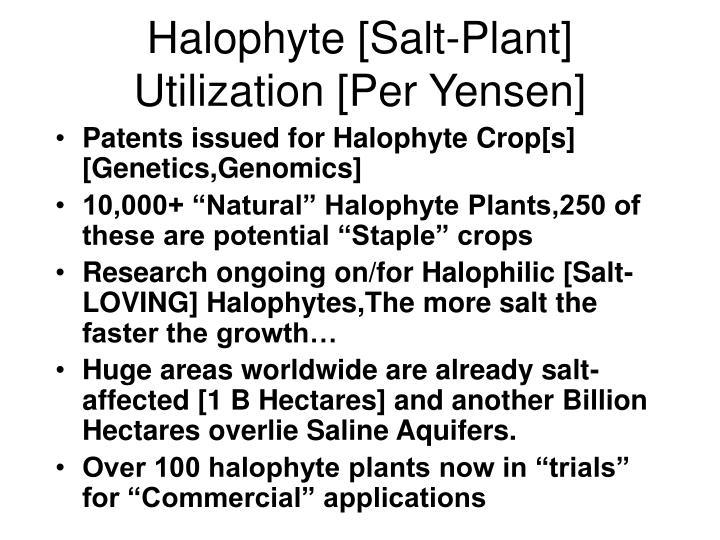 Halophyte [Salt-Plant] Utilization [Per Yensen]