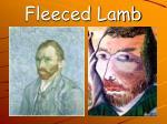 fleeced lamb