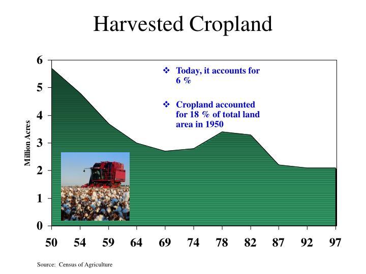 Harvested Cropland