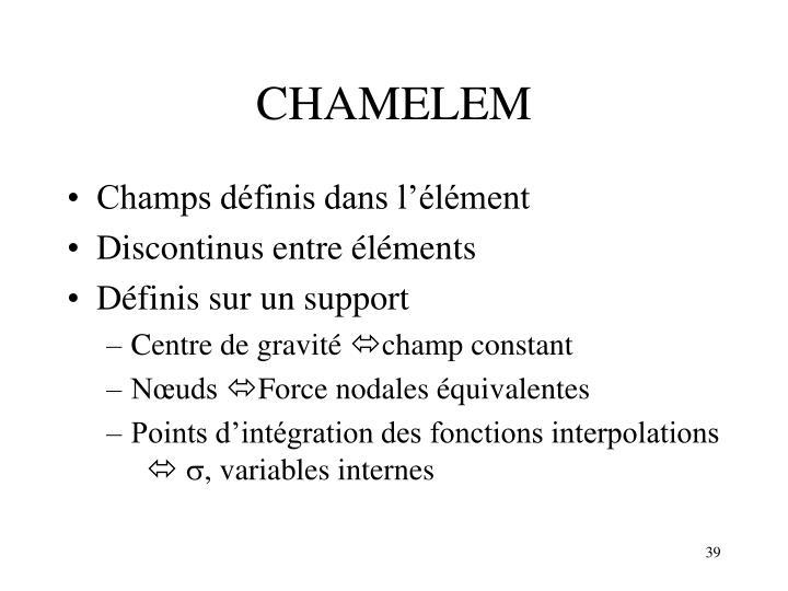 CHAMELEM
