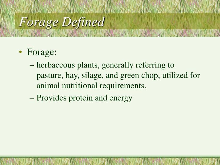 Forage Defined