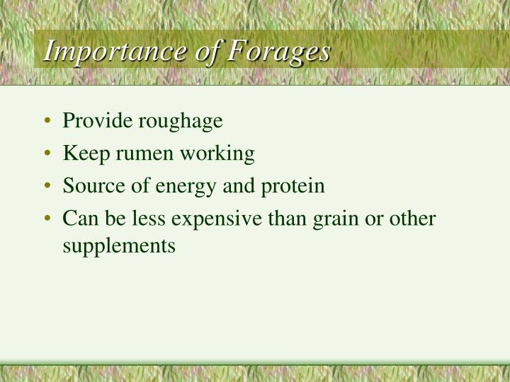 Importance of Forages
