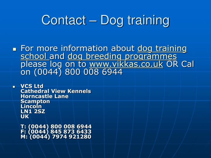 Contact dog training