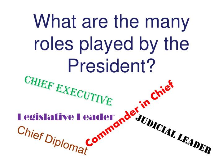 What are the many roles played by the President?