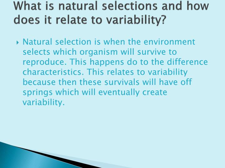 What Does Natural Selection Do To Variability