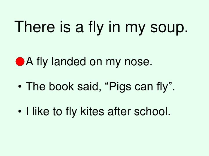 There is a fly in my soup.