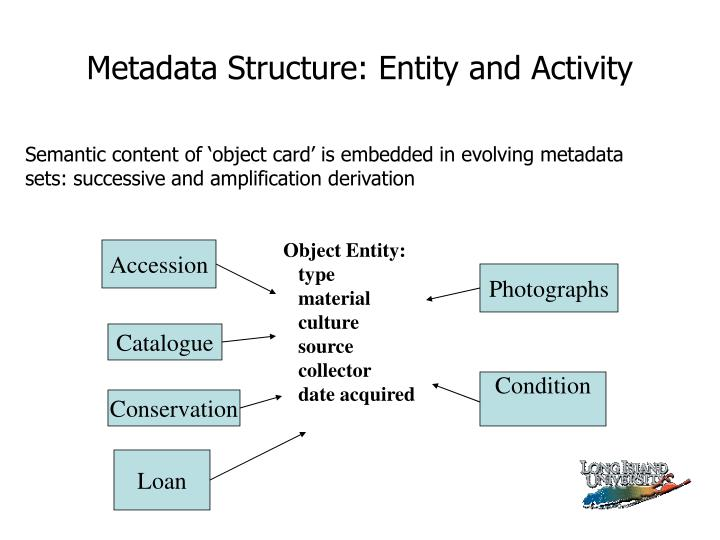 Metadata Structure: Entity and Activity
