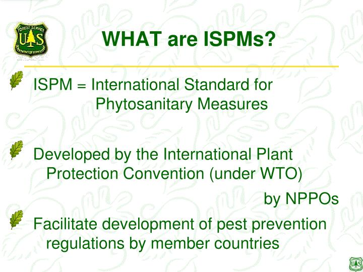 WHAT are ISPMs?