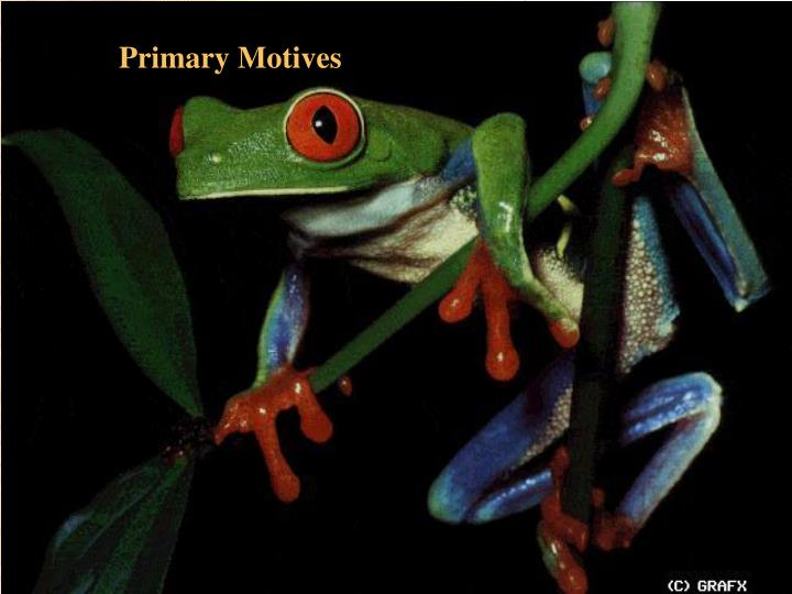 Primary Motives