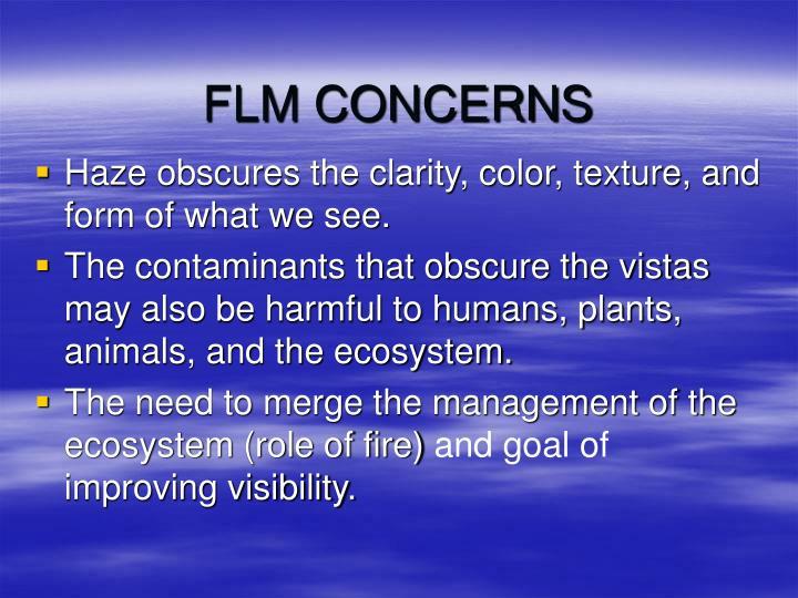 FLM CONCERNS